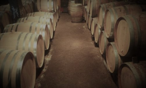 Cave Domaine Duvernay